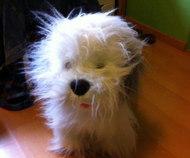 Плюшевая  игрушка собака. Фото 2. Москва.