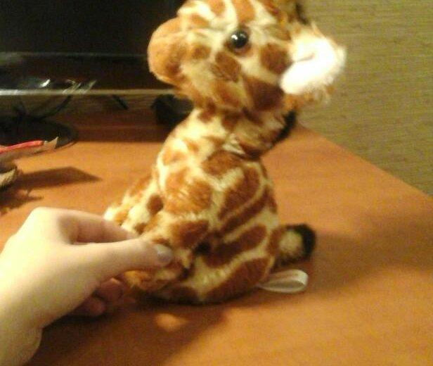 Мягкая игрушка жираф. Фото 2. Новокузнецк.