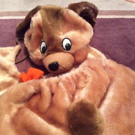 Костюм карнавальный медведь напрокат. Фото 1. Москва.