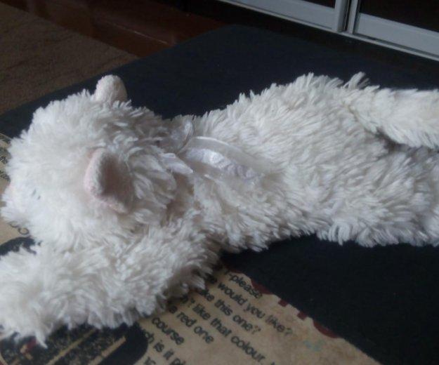 Кошка игрушка. Фото 2. Воронеж.