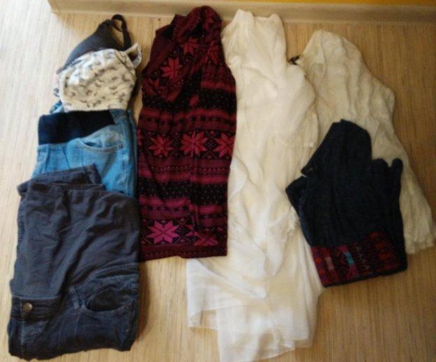 Одежда для беременных 48-50. Фото 1.