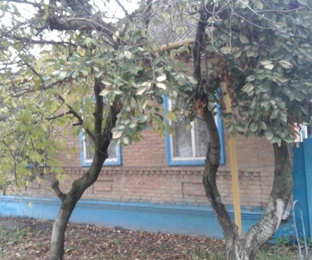 Продается дом. Фото 4. Зеленокумск.