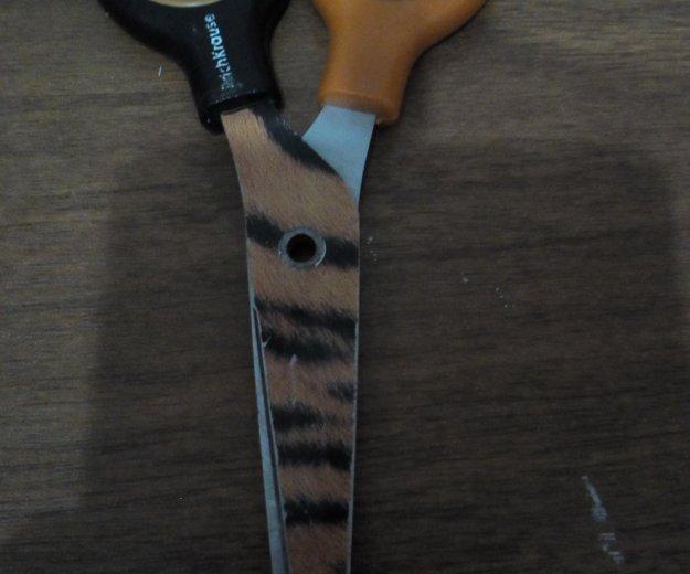 Ножницы. Фото 1. Анапская.