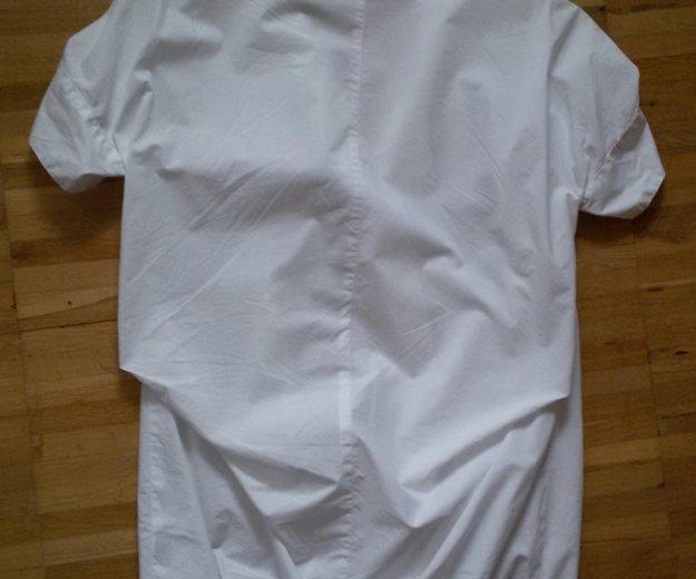 Блузон длинный calvin klein из хлопковой ткани. Фото 4. Москва.