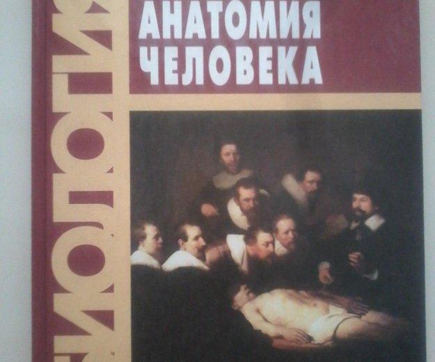 Анатомия человека. Фото 1. Санкт-Петербург.