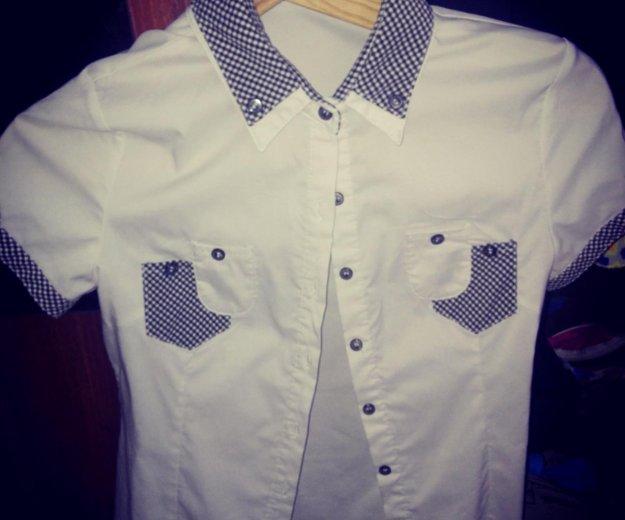 Блузка,размер xl . Фото 1. Самара.
