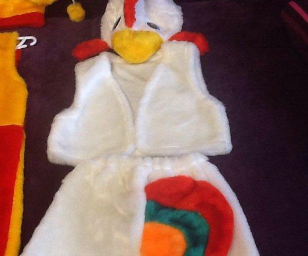 Новогодний костюм петушок. Фото 1. Гусев.