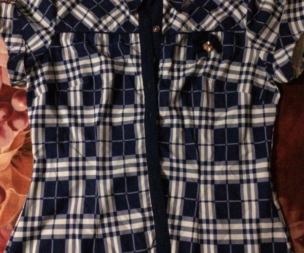 Блузка в клеточку. Фото 1.