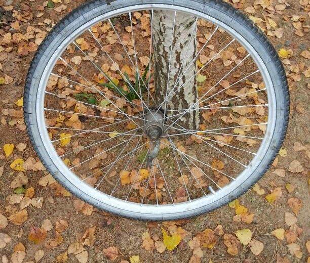 Колесо велосипедное заднее в сборе. Фото 1.