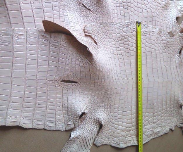 Кожа нильского крокодила. Фото 2. Москва.