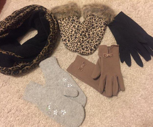 Шарф, варежки, перчатки. Фото 1.