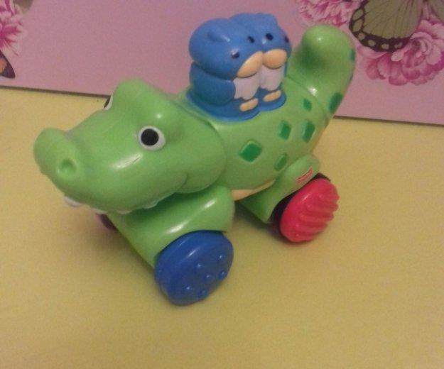 Крокодил. Фото 1. Зеленоград.