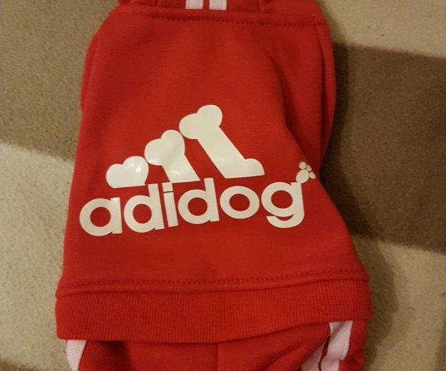 Комбинезон для собаки. одежда для собак. Фото 4.