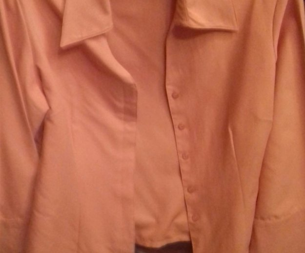 Рубашки по 350руб. Фото 3. Ковров.
