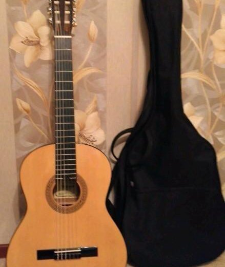 Гитара. Фото 1. Видное.