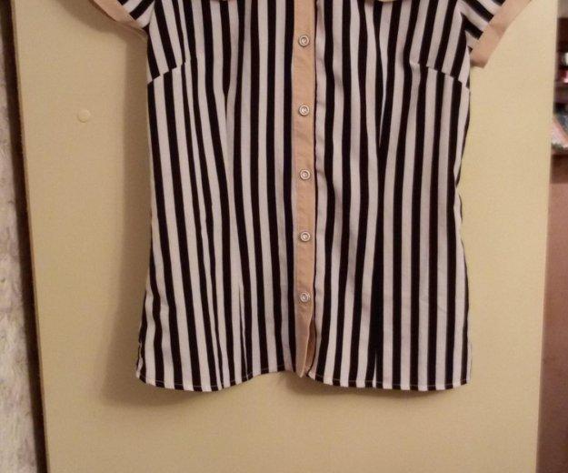 Рубашка с коротким рукавом. Фото 2. Москва.
