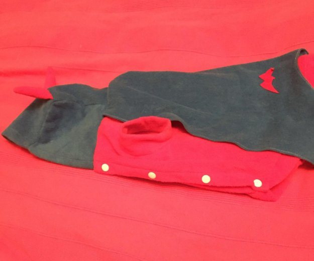 Костюм   карнавальный ( синий с красным). Фото 3.