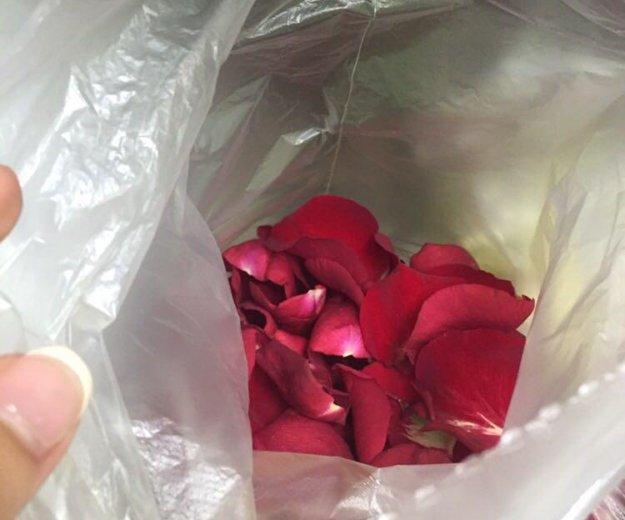 Лепестки роз в пакете. Фото 1. Санкт-Петербург.