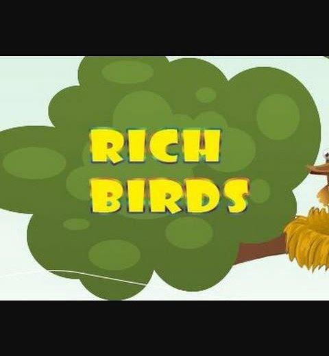 Аккаунт от игры rich birds. Фото 1. Чебоксары.