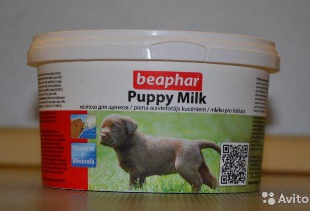 Сухое молоко для щенков. Фото 1.