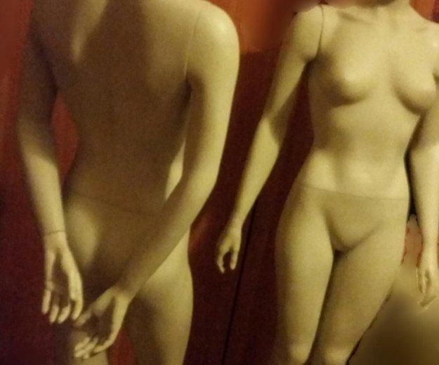 Манекен женский полный рост. Фото 2. Москва.