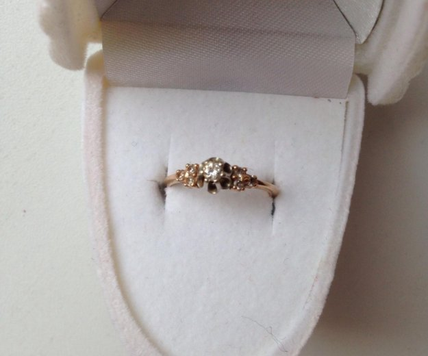 Золотое кольцо 15. Фото 4. Санкт-Петербург.