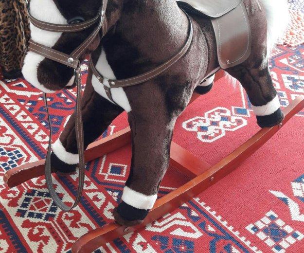 Продам лошадку-качалку.. Фото 1.