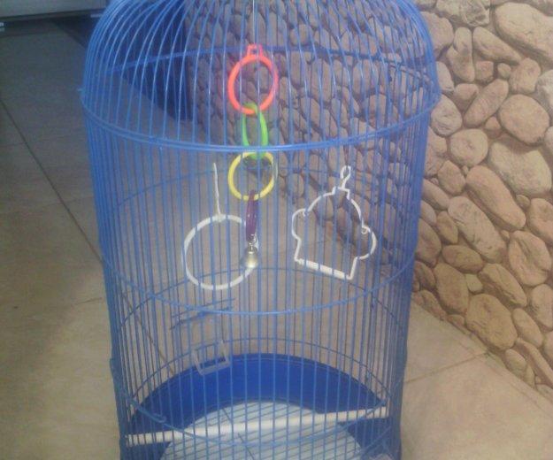 Клетка для попугая. Фото 1. Биробиджан.