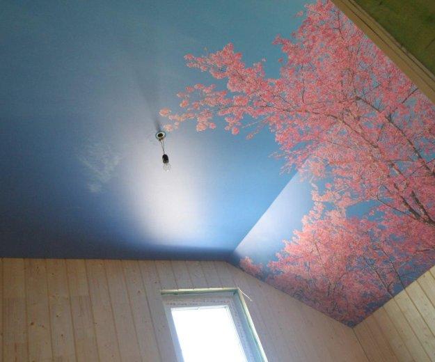 Натяжные потолки любой сложности. Фото 1. Сургут.