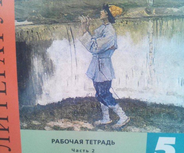 Рабочая тетрадь по литературе 1и 2 часть. 5 класс. Фото 4. Краснодар.