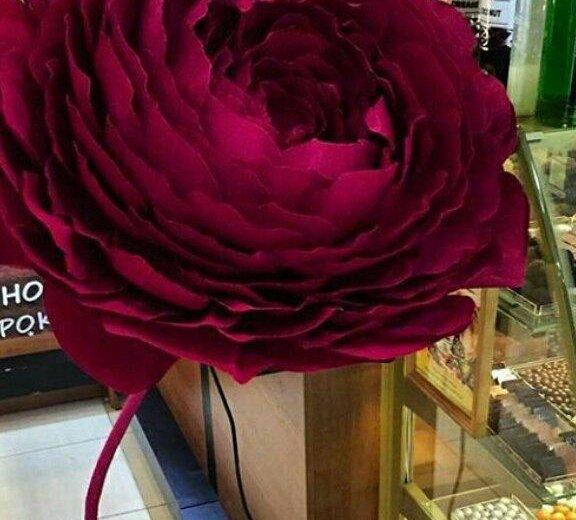 Гигантские цветы для фотосессии. Фото 1. Краснодар.