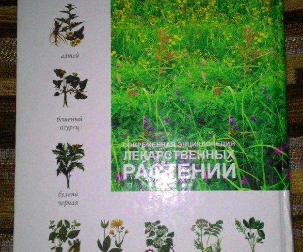Энциклопедия лекарственных растений. Фото 2. Каспийск.