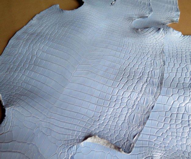 Шкурки/кожа нильского крокодила. Фото 1. Москва.