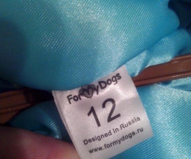 Костюм для собаки. Фото 4. Ревда.