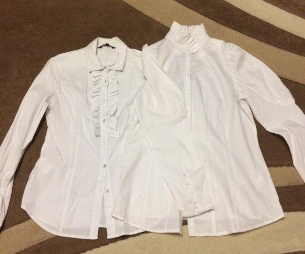 Блузки (рубашки). Фото 1. Иваново.
