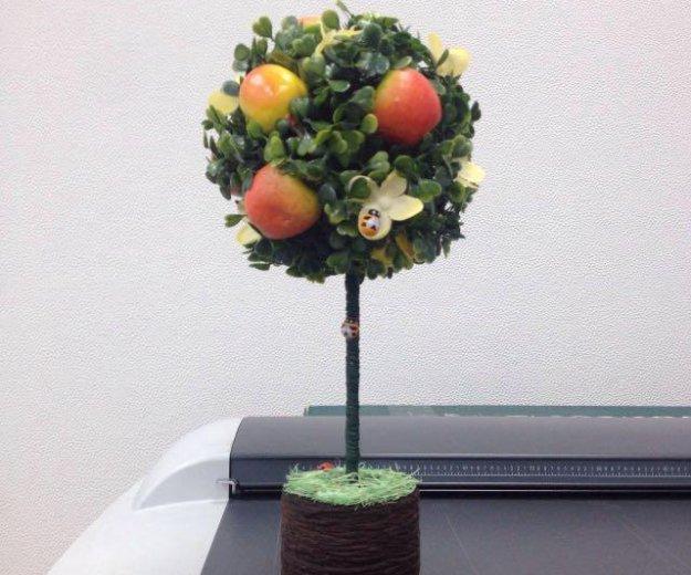 """Топиарий """"фруктовое дерево"""". Фото 2. Юбилейный."""