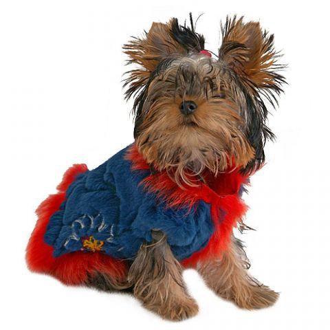 Одежда для собак жилет из меха кролика. Фото 1. Москва.