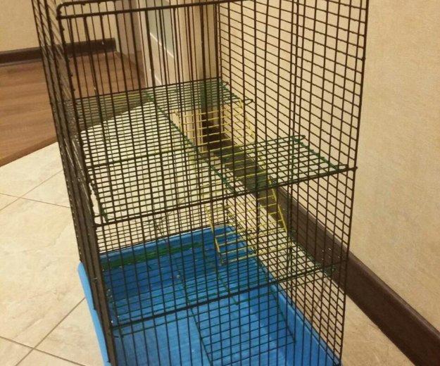 Клетка для грызунов. Фото 1. Боровск.
