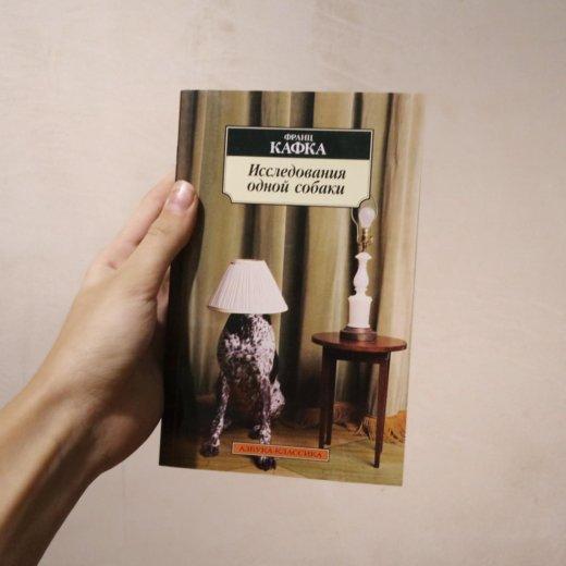 """Франц кафка """"исследования одной собаки"""". Фото 1. Покрово-Пригородное."""