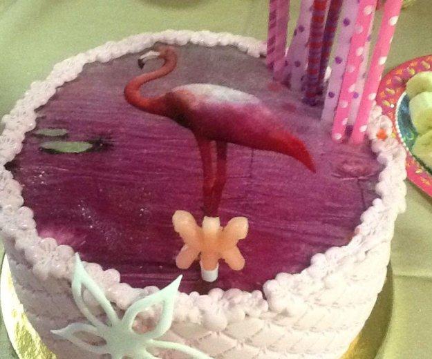 Торт под праздник. Фото 1. Островцы.