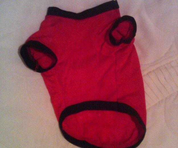 Красная футболка д/собак,кошек. Фото 1. Набережные Челны.