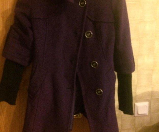 Куртки и пальто. Фото 1. Янино-1.