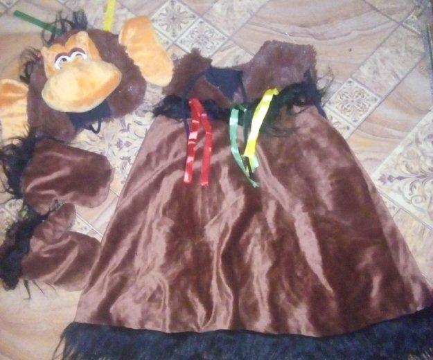 Новогодний костюм обезьяны. Фото 2. Смоленск.