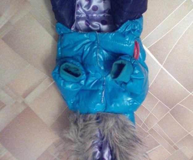 Тёплый костюм для вашего любимца !в наличии‼️‼️. Фото 3. Боровичи.