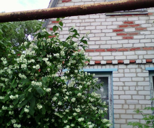 Дом+летняя кухня. Фото 1. Белгород.