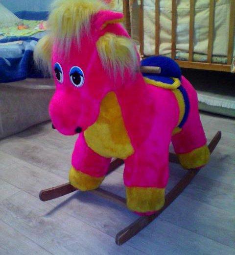 Конь. Фото 1. Пенза.