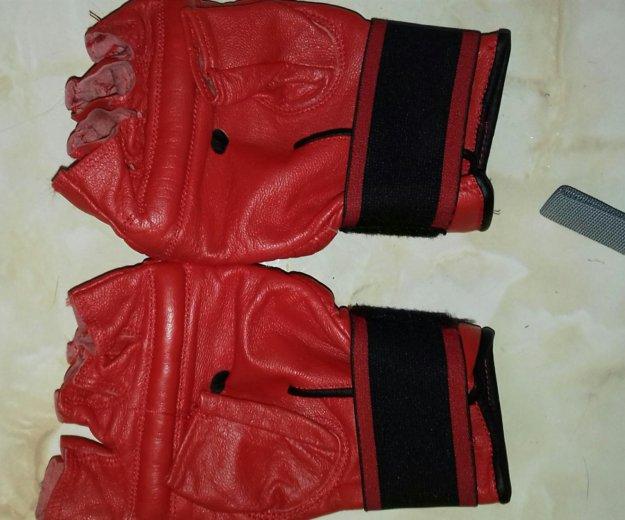 Перчатки для боевого самбо. Фото 2. Мытищи.