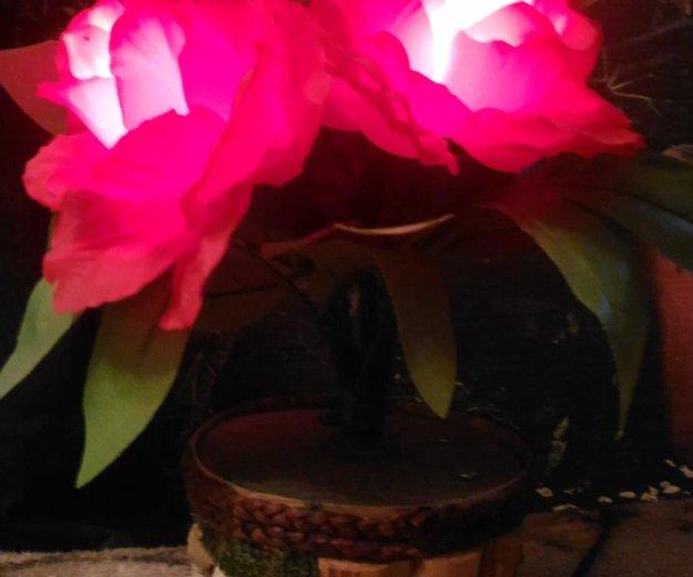 Лампа. Фото 2. Всеволожск.