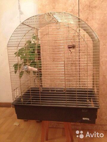 Клетка для птицы. Фото 1. Москва.