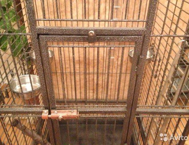 Большая клетка для птиц. Фото 2. Москва.
